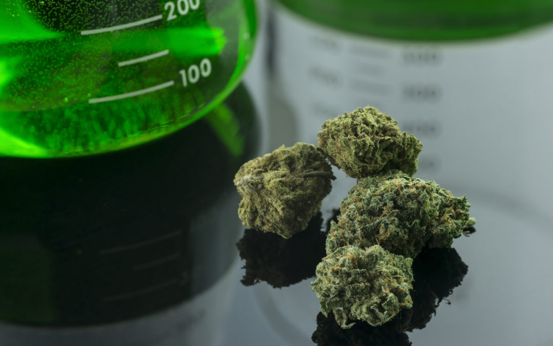 New Oklahoma Medical Marijuana Testing Lab License Coming In August | Part 1