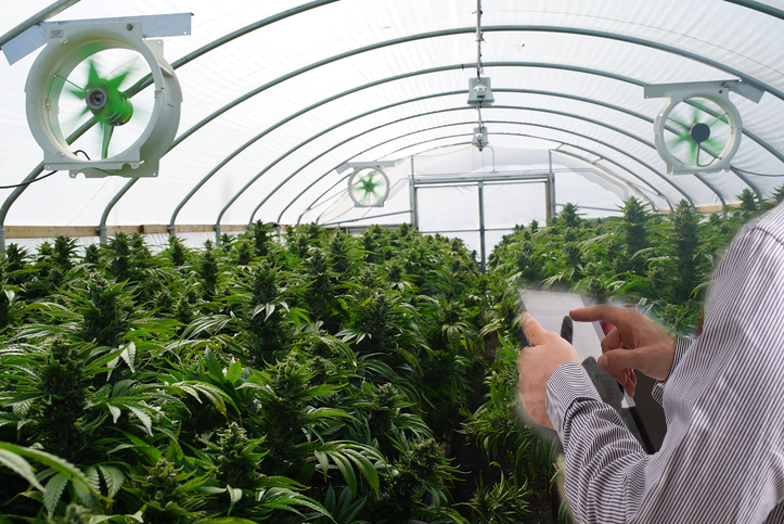 """What Oklahoma Medical Marijuana Businesses Need To Know About Inspections Under The New """"Unity Bill"""" Law"""